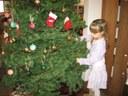 2010-12 tree & movie 021.jpg